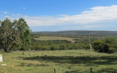 GRAHAMSTOWN GAME FARM