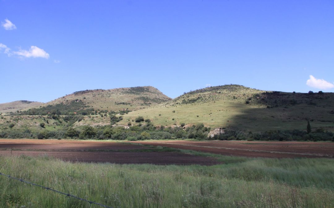 ELLIOT EASTERN CAPE – LIVESTOCK FARM FOR SALE
