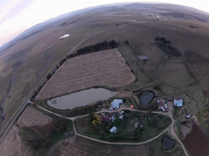 MACLEAR FARMS EASTERN CAPE