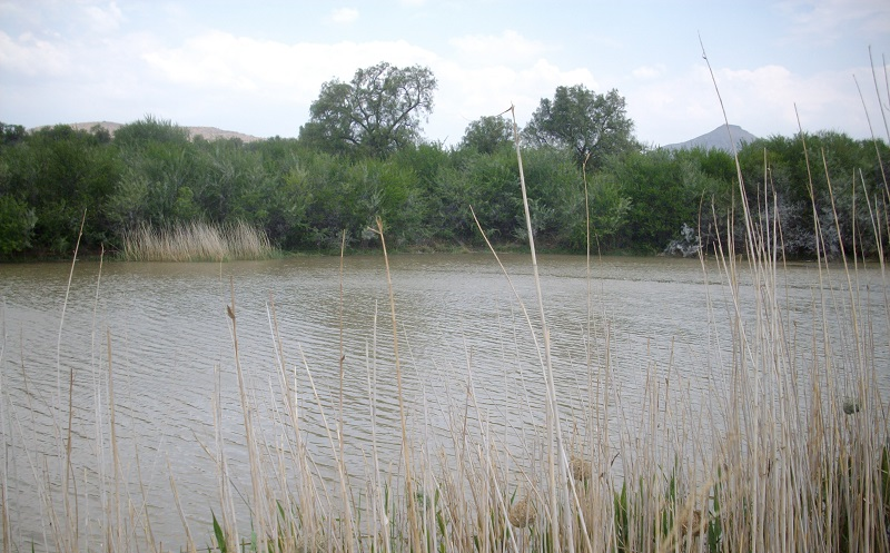 CRADOCK FISH RIVER IRRIGATION FARM