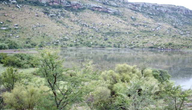 EXCELLENT CATTLE AND SHEEP FARM  – MOLTENO