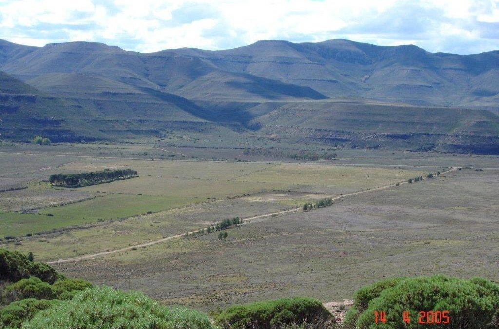 Graaff Reinet (Sneeuberg) Cattle Farm to lease by CLOSED TENDER